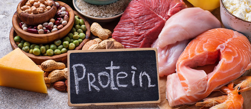 a photo of different sources of protein